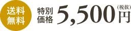 特別価格5,500円