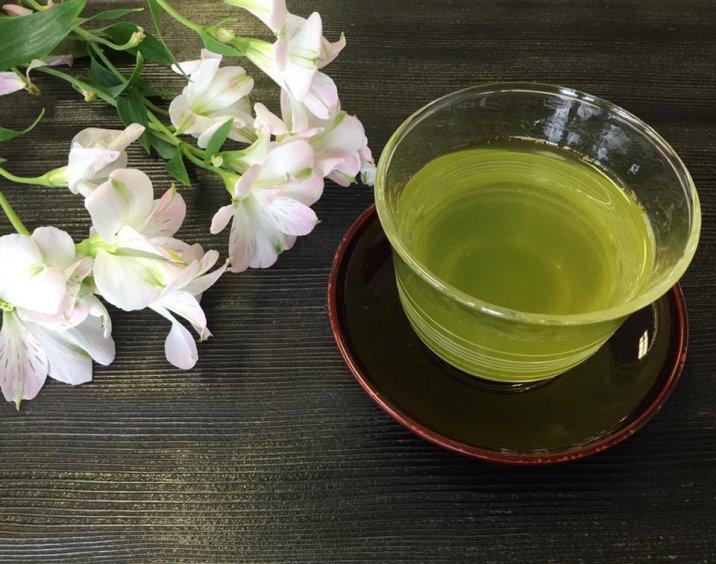 かめりあ フィルターインボトル 冷茶 緑茶 美味しい