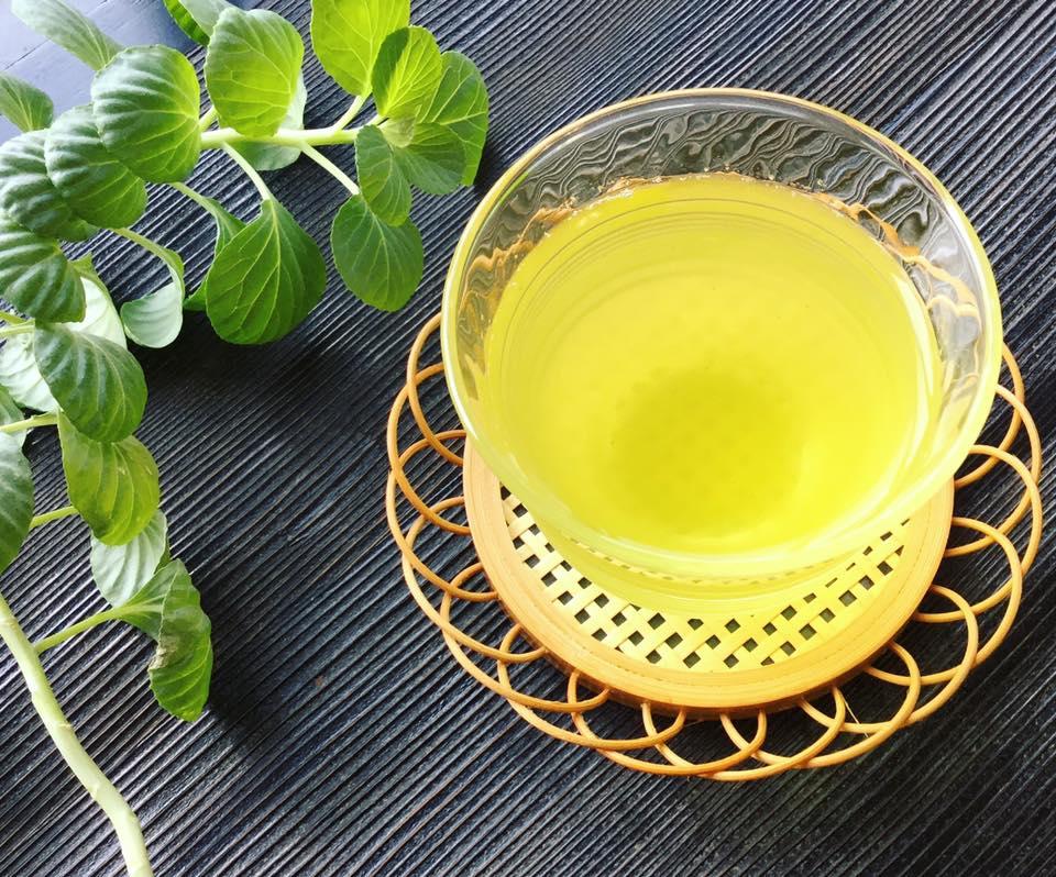 かめりあ 冷茶 カテキン 緑茶